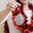 Silvery christmas toy - Stock Photo