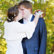 Bride and groom kissing - Foto Stock