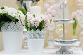 Delicious wedding sweets — Stock fotografie