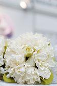 Beige wedding bouquet — Stock Photo