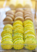 Macaroon cookies — Stock Photo