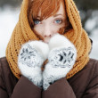 Stock Photo: Beautiful womin winter