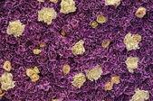 Wall of fresh flowers — Foto de Stock
