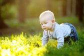 Baby at the sunny park — Stock Photo