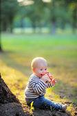 Little baby boy at the sunny park  — Foto de Stock