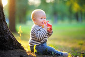 Baby boy at the park — Foto Stock