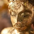 Image buddha — Stock Photo