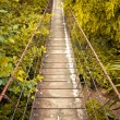 Rope walkway through — Stock Photo #12372349