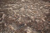 O surpreendente da rocha — Foto Stock