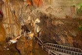 Mağarada aydınlatma — Stok fotoğraf