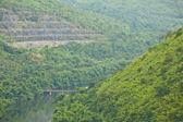 Ponte per la montagna della giungla — Foto Stock