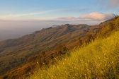 在山的日落 — 图库照片