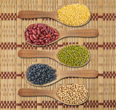 Collection of beans — Stock Photo