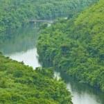 Bridge to the jungle mountain — Stock Photo