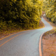 A curving road — Stock Photo