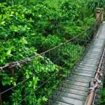 Rope walkway through — Stock Photo #12628464