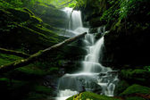 Deep forest Waterfall — 图库照片