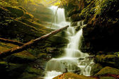 Waterfall in spring forest — Stock Photo
