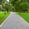 Path through landscaped park — Stock Photo #13602792