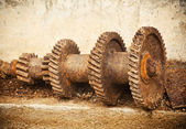 Gears on the old cement — Stock Photo