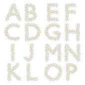 Plumeria alphabet isolated — Stock Photo