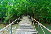 Rope walkway — Stock Photo