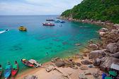 Tourists snorkeling — Stock Photo