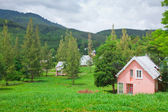 деревни и горы — Стоковое фото