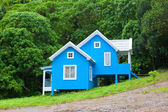 Blaues haus im wald — Stockfoto