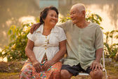 Szczęśliwa para starszy siedzi na zewnątrz — Zdjęcie stockowe