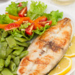 Fish with vegetables on the plate — Stock Photo