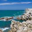 Rocks in ocean — Stock Photo #24990027