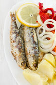 Fried sardines on white dish — Stock Photo