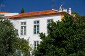 Building in Constancia, Portugal — Stock Photo