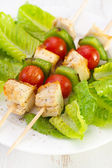 Chicken kebab with vegetables — Stock Photo