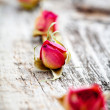 Dried rose buds — Stock Photo #12316725