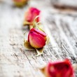 Stock Photo: Dried rose buds