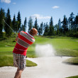 Golfer — Stock Photo #12316743