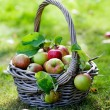 Stock Photo: Apples in basket