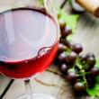Red wine — Stock Photo #13722307