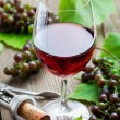 Red wine — Stock Photo #13722309