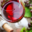 Red wine - Stock Photo