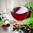 Red wine — Stock Photo #13722318