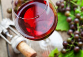Vinho tinto — Foto Stock