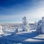Lapland Finland — Stock Photo
