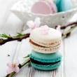 French macaroons — Stock Photo