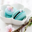 French macaroons — Stock Photo #22491737