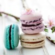 French macaroons — Stock Photo #25743065