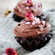 Chocolate cupcakes — Stock Photo