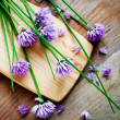 Bunch of fresh flower chives — Stock Photo #27602961